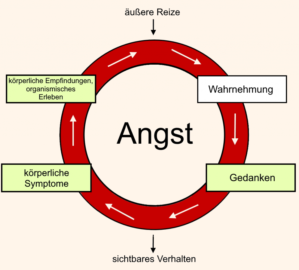 Angstkreislauf nach Markgraf und Schneider (1990), überarbeitet von Christina Schieferdecker
